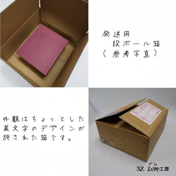 山城さんDWG三角-006